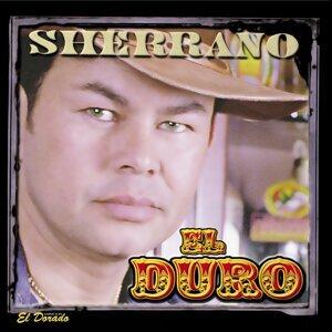 Sherrano 歌手頭像