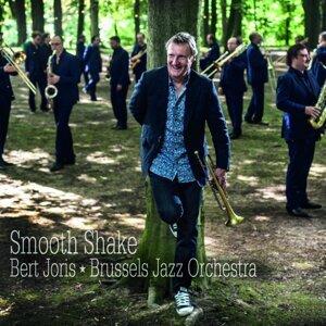 Brussels Jazz Orchestra, Bert Joris 歌手頭像