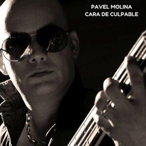 Pavel Molina Feat. Orquesta Manana 歌手頭像