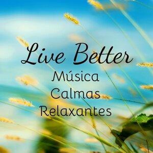 Concentration Music Ensemble & Relaxamento Soundscape & Musica para Bebes Especialistas 歌手頭像