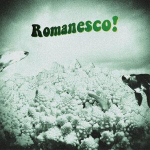 ロマネスコ 歌手頭像