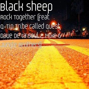 Black Sheep 歌手頭像