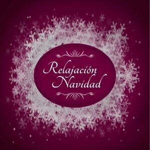 Instrumental Christmas Music Orchestra & Christmas Songs & Christmas Hits & Christmas Songs 歌手頭像