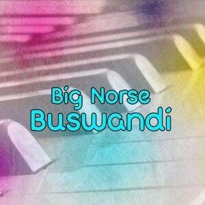 Big Norse 歌手頭像