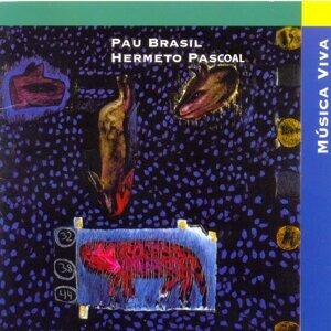 Pau Brasil, Hermeto Pascoal 歌手頭像