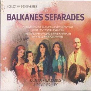 Quatuor Balkanes, David Bruley 歌手頭像