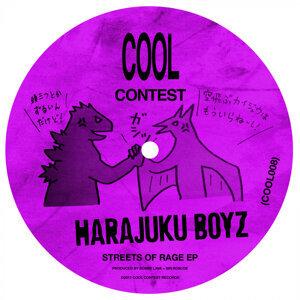 Harajuku Boyz 歌手頭像