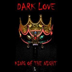 Dark Love 歌手頭像