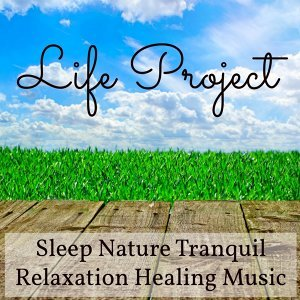 Sleep Sounds of Nature & Nature Sounds Nature Music & Tranquil Music Sound of Nature 歌手頭像