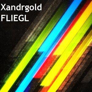 Xandrgold 歌手頭像