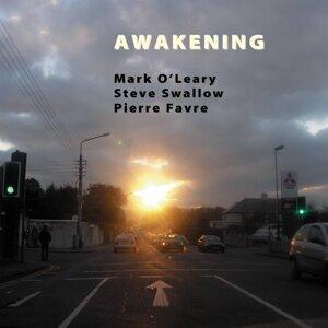 Mark O'Leary, Steve Swallow, Pierre Favre 歌手頭像