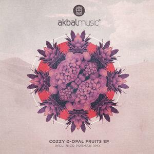 Cozzy D