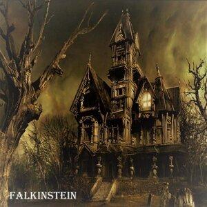 Falkinstein 歌手頭像
