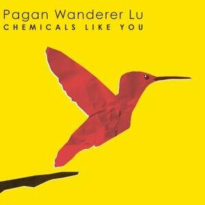 Pagan Wanderer Lu 歌手頭像