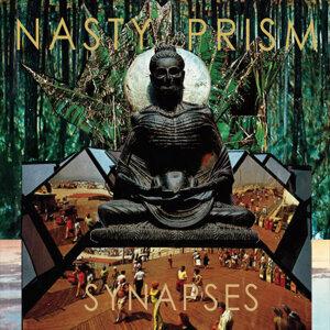 Nasty Prism 歌手頭像