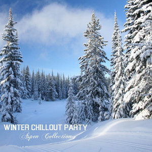 Winter Chillout Party Music Club 歌手頭像