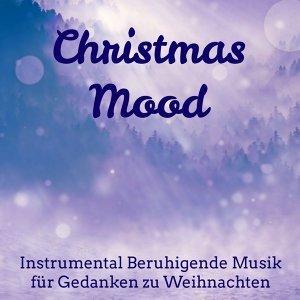 Weihnachtslieder & Mozart Eine Kleine Nachtmusik Ensemble-Wolfgang Amedeus Mozart & Julsånger Akademi 歌手頭像