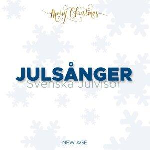The Christmas Song & Christmas Party Ideas & Christmas Band 歌手頭像