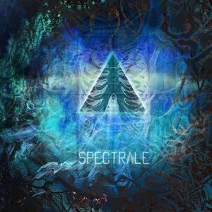 Spectrale 歌手頭像