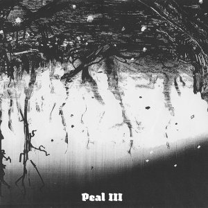Peal 歌手頭像