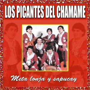 Los Picantes del Chamamé 歌手頭像