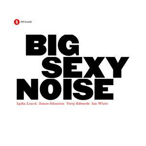 Big Sexy Noise 歌手頭像