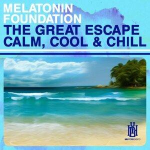 Melatonin Foundation 歌手頭像