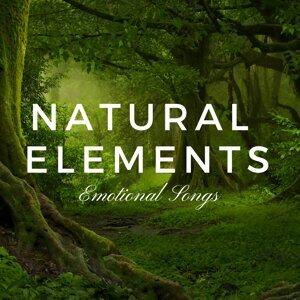 Natural Element 歌手頭像