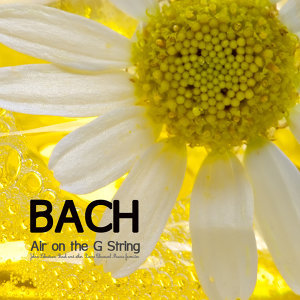Bach Music Consort for the Heart