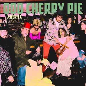Odd Cherry Pie 歌手頭像