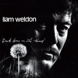 Liam Weldon 歌手頭像
