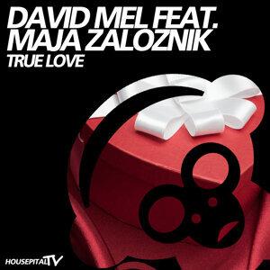 David Mel featuring Maja Zaloznik 歌手頭像