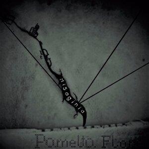 Pamelita Flores 歌手頭像