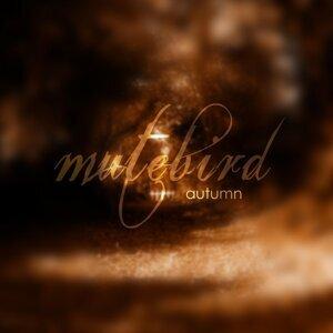 Mutebird 歌手頭像