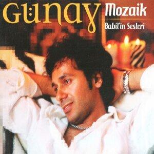 Günay Naiboğlu 歌手頭像