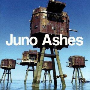 Juno Ashes 歌手頭像
