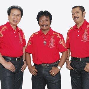Taruli Trio 歌手頭像