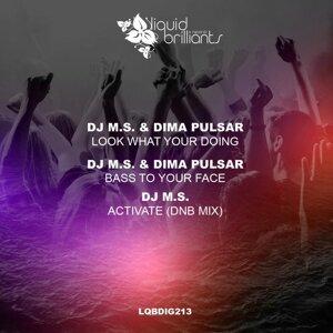 DJ M.S., Dima Pulsar 歌手頭像