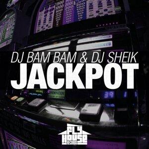 DJ Sheikh / Pardesi 歌手頭像