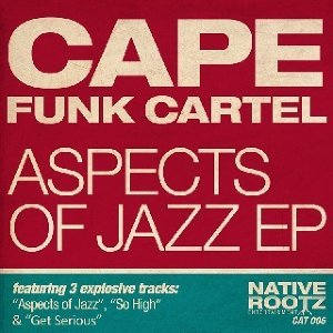Cape Funk Cartel 歌手頭像
