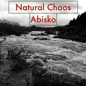 Natural Chaos 歌手頭像