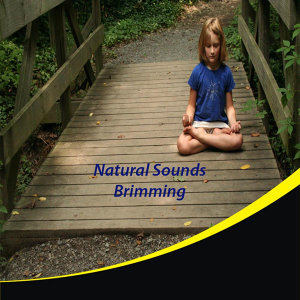 Natural Sounds Brimming 歌手頭像