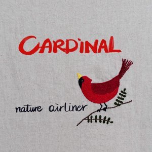 Nature Airliner 歌手頭像