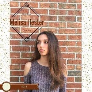 Melisa Hester 歌手頭像