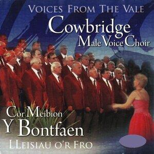 Cowbridge Male Voice Choir 歌手頭像