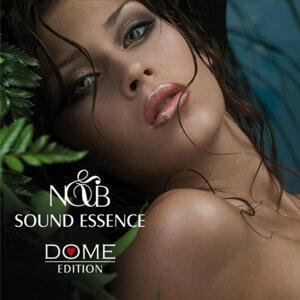N&B 歌手頭像