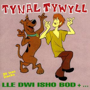 Tynal Tywyll