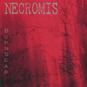 Necromis 歌手頭像
