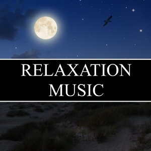 Asian Zen Spa Music Meditation, White Noise Research & Sleep Music Consort 歌手頭像