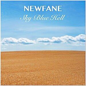 Newfane 歌手頭像